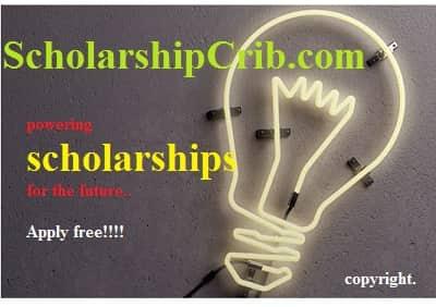 Fulbright Essay Tips For Scholarships