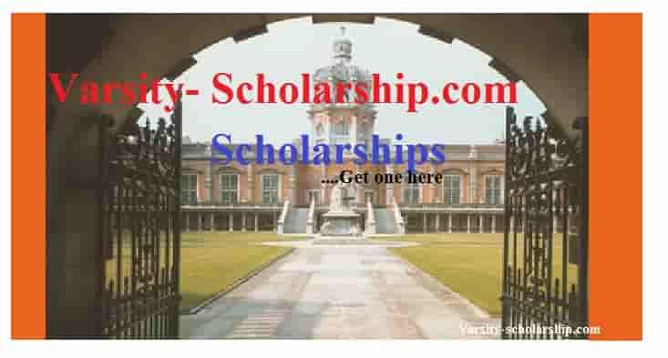 custom scholarship essay proofreading websites au