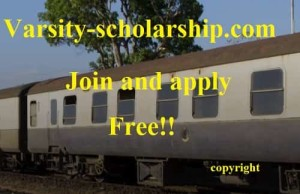 Transcultural Studies Scholarships