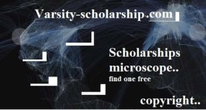 Elaine Geering Literature Scholarships