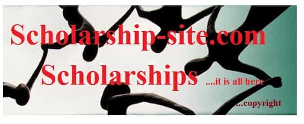 Iapmo scholarship essay contest